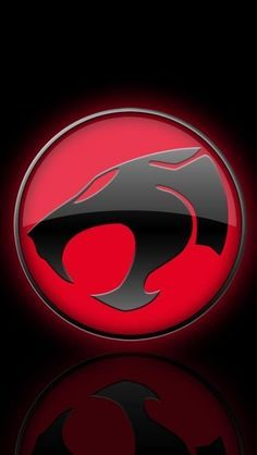 I felt the magic and heard the roar everyday after school in mexico thundercats voltagebd Images