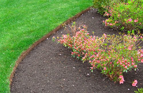 Bed Edging A Cut Or Hand Dug Landscape Edge Is An Easy 400 x 300