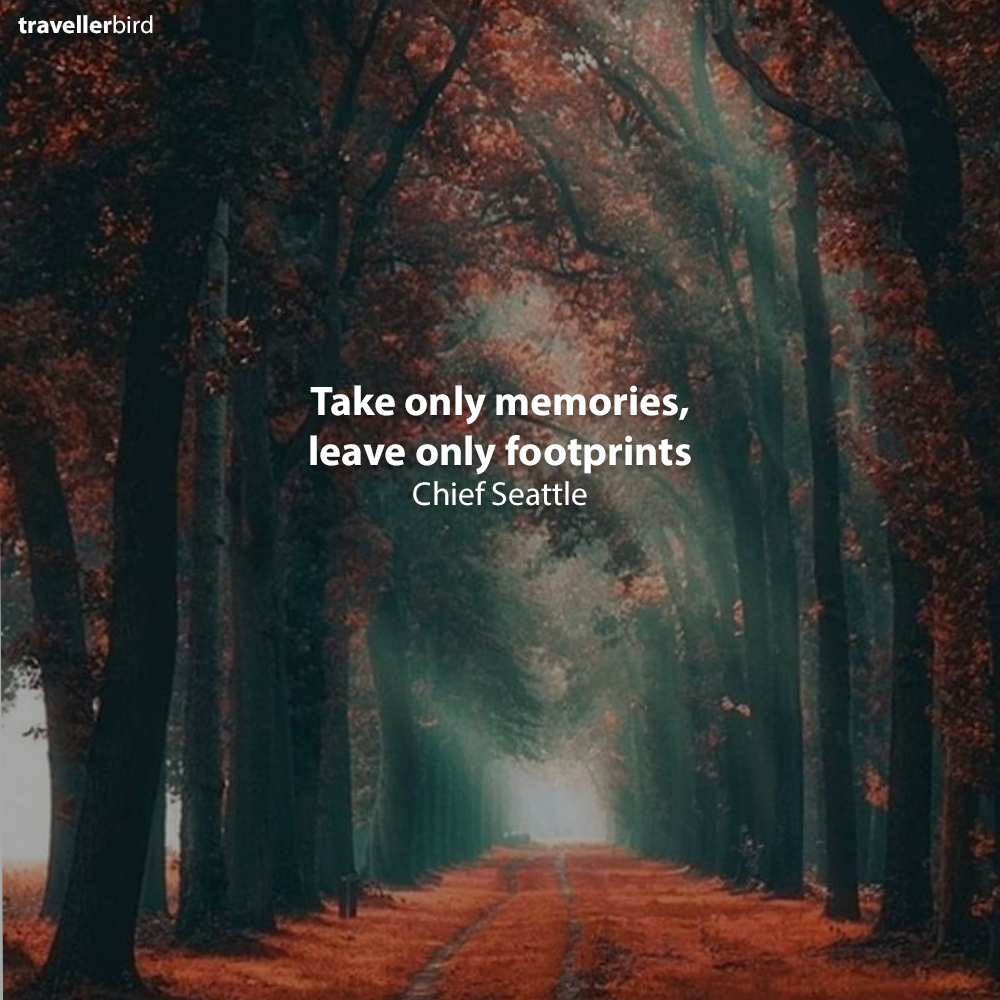 Chief Seattle Qoutes Take Only Memories Leave Only Footprints Chief Seattle Travel Book Trip