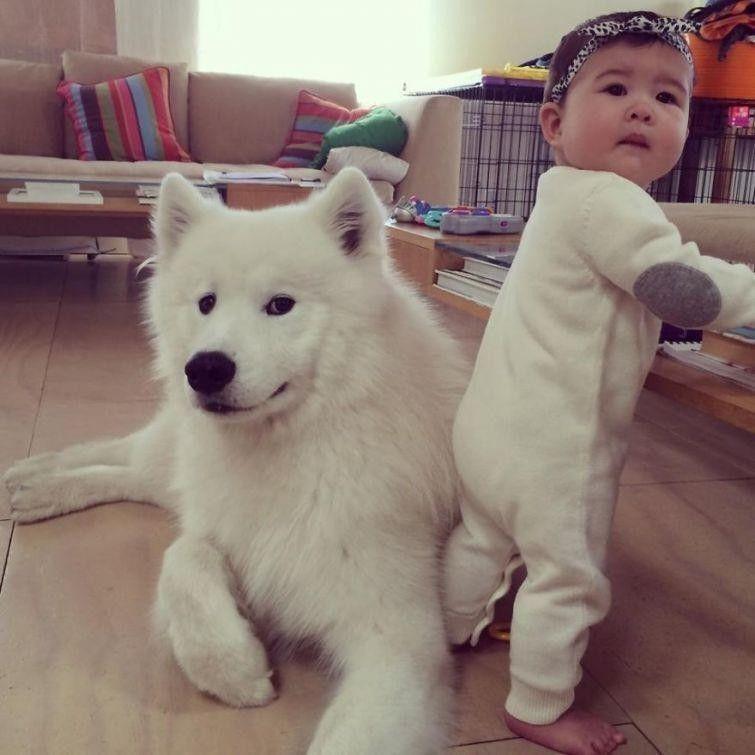 Дети и собаки всегда естественны