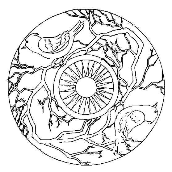 Coloriage De Mandala Doiseau.Coloriage Mandala Oiseau Oiseaux Pinterest Coloriage Mandala