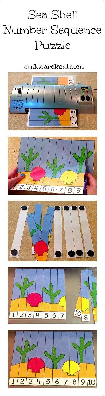 Sea Shell Number Sequence Puzzle  - Pinned by @PediaStaff – Please Visit ht.ly/63sNtfor all our pediatric therapy pins
