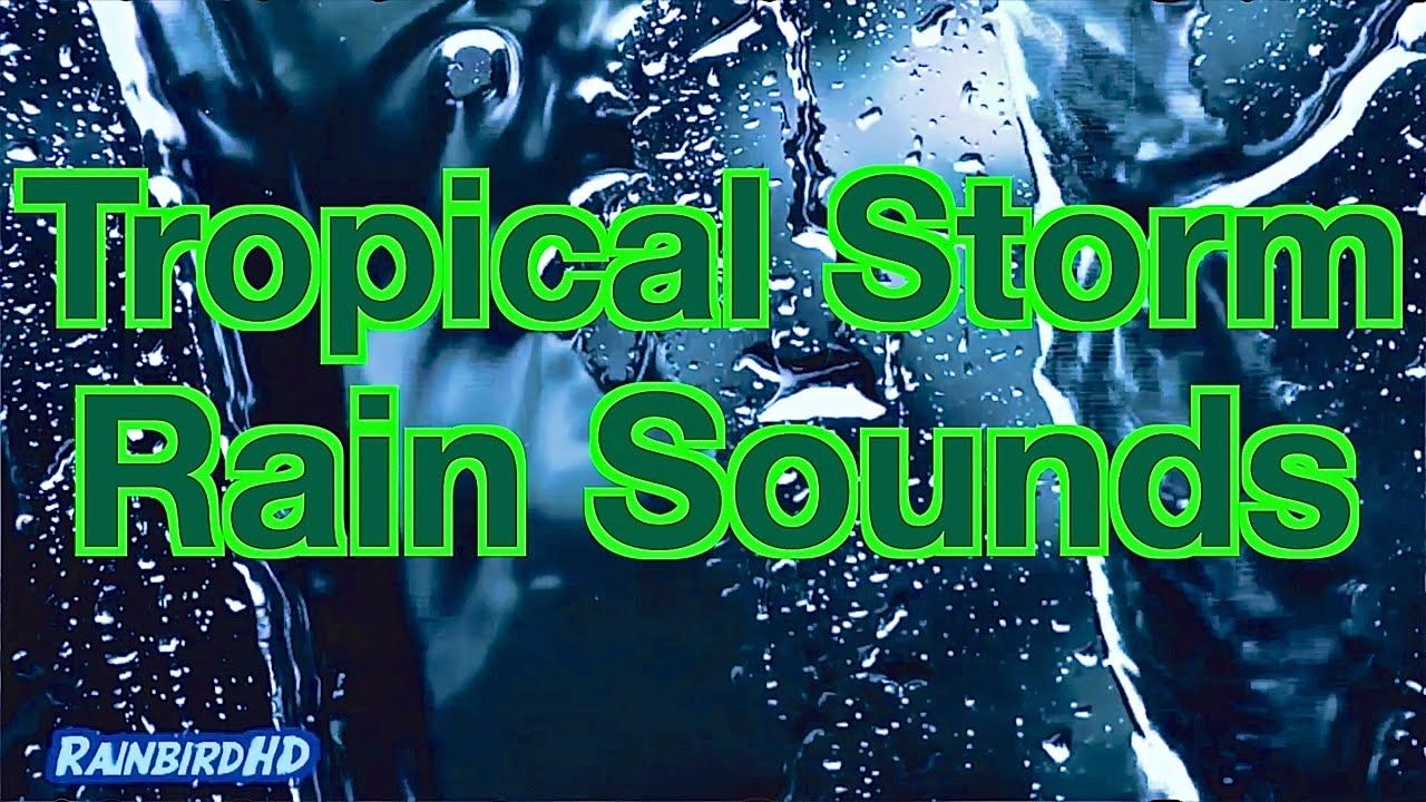 Heavy Rain Sounds 8 Hours Of Pouring Rain And Thunder During Tropical Storm Rain And Thunder Sound Of Rain Rain