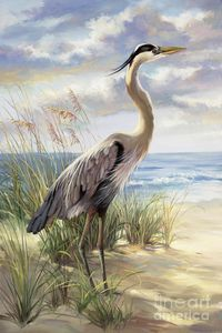 Blue Heron Watercolor Painting Google Search In 2019 Birds