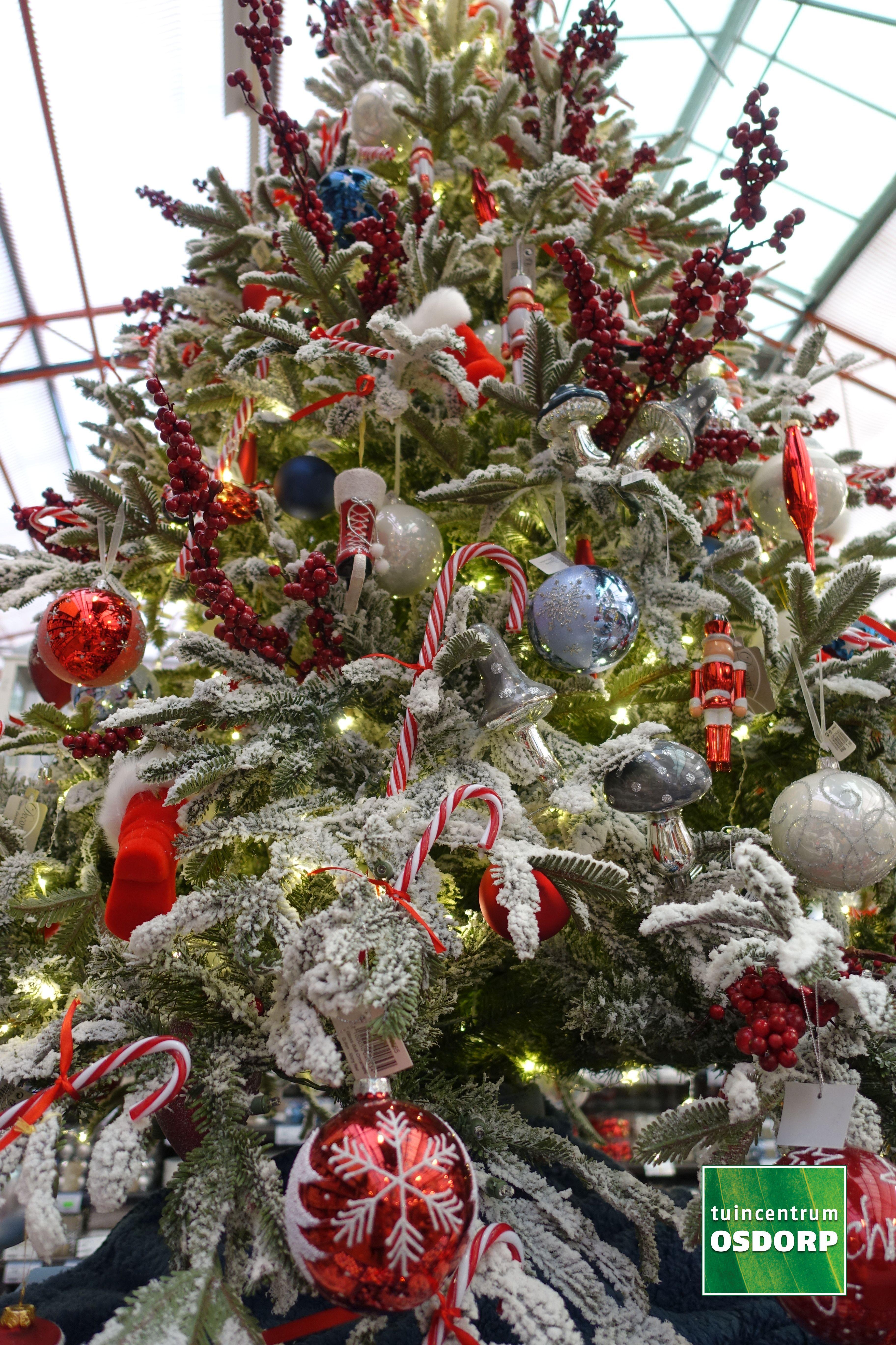 Kerst Inspiratie Bij De Kerstshow Van Tuincentrum Osdorp Kerstboom Versiering Rood Wit Blauw Parel E Kerstkransen Tuincentrum Osdorp Kerstboom Versieringen