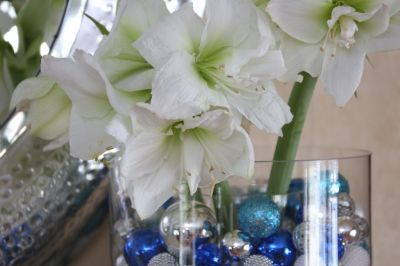Small glass ornaments and white amaryllis - what a great holiday decorating idea!