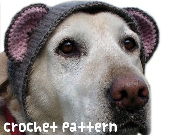crochet pattern - large teddy bear dog hat - pet halloween costume  amigurumi kawaii big labrador lab disguise - (instant download) on Etsy 37fb439089d
