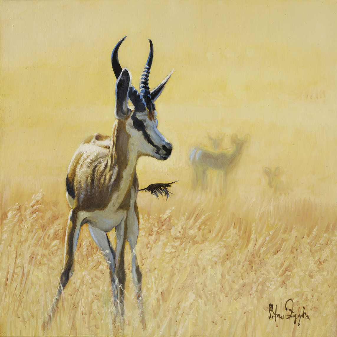 Gazelle Painting By Wildlife Artist Stefano Zagaglia