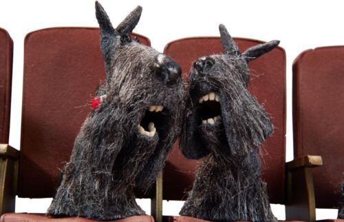 Image result for coraline schnauzers