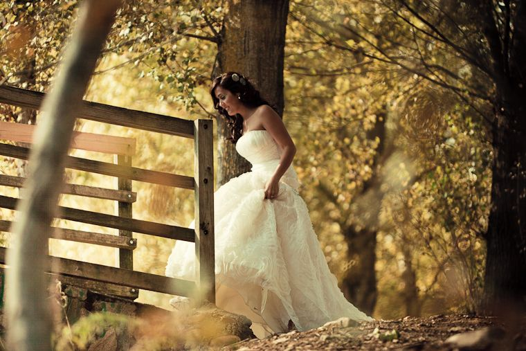 The bride and her beautiful dress