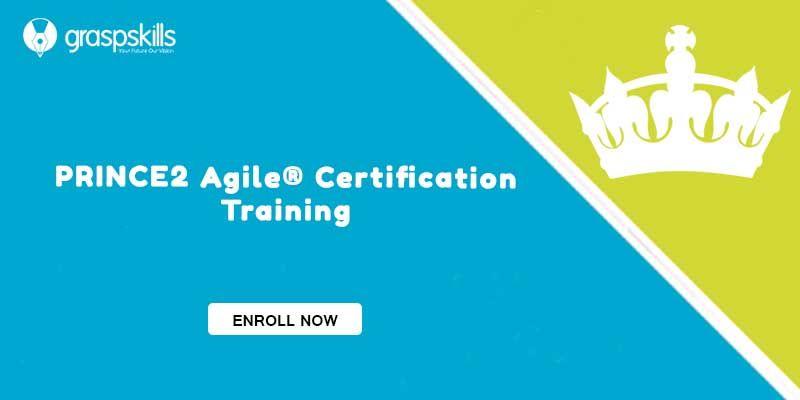 Prince2 Agile Certification Training Program Provides The Idea To
