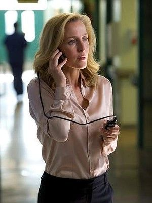 Detective Superintendant Stella Gibson in the TV series The Fall.