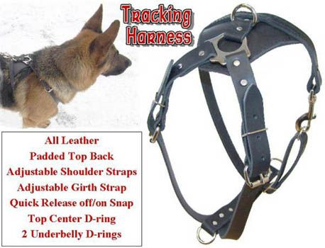 Ultimate Tracking Harness | Tracking dog Products | Pinterest