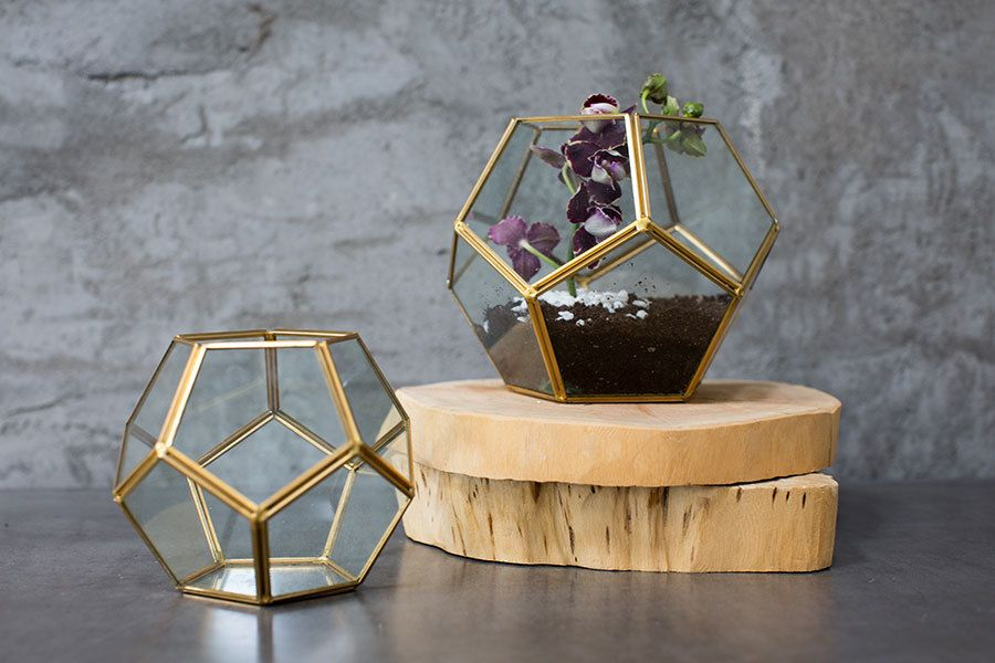 Gold terrarium,  glass hexagon display box, glass globe, glass planter, gold…