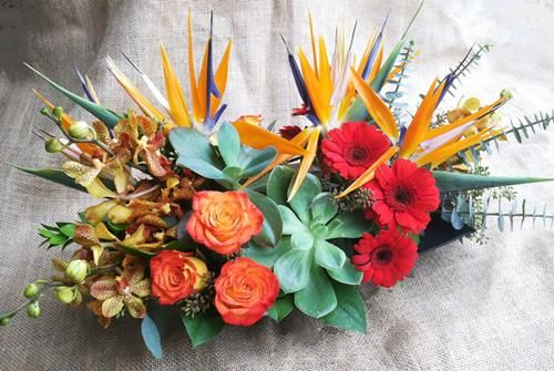 Phoenix Florist Cactus Flower Florists Az Sunny Thanksgiving By Cactus Flower Cactus Flower Florist Cactus