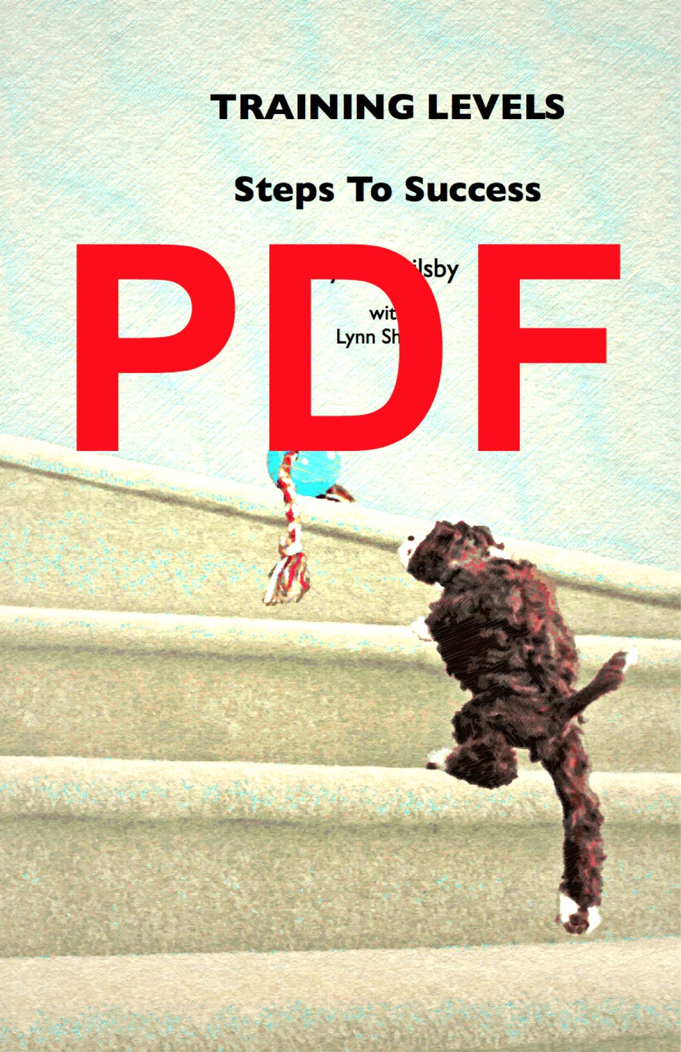 Training Levels PDF Download Steps to success, Train