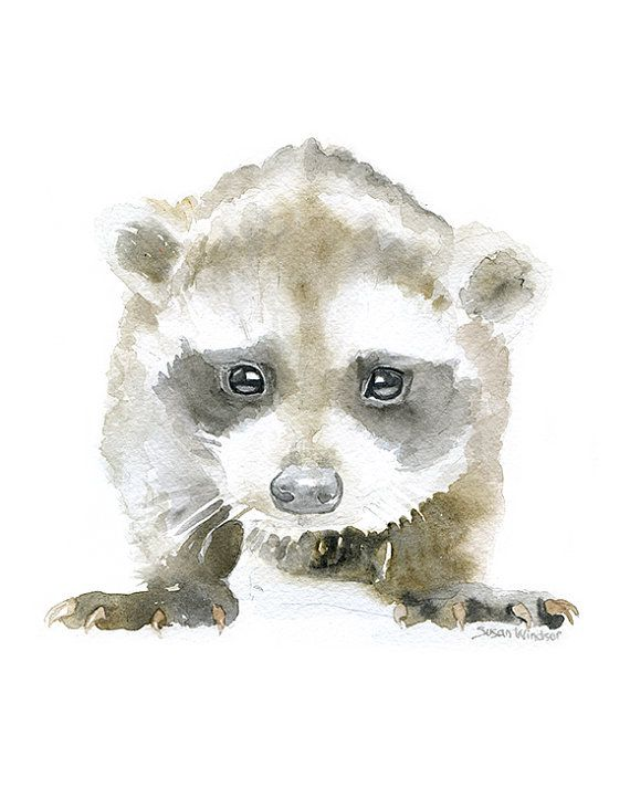 Baby Raccoon Watercolor Painting 8 x 10 - 8.5x11 Fine Art Giclee ...