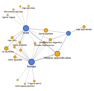 google fusion tables network graph  an experimental app