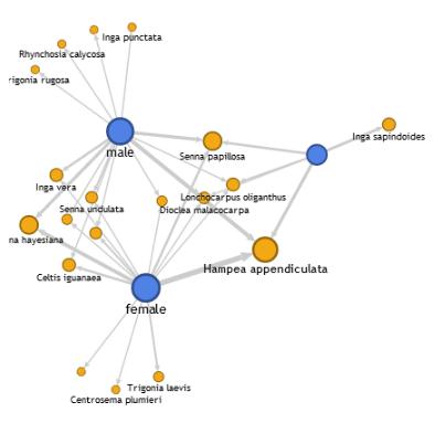 Google Fusion Tables Network Graph: An Experimental App