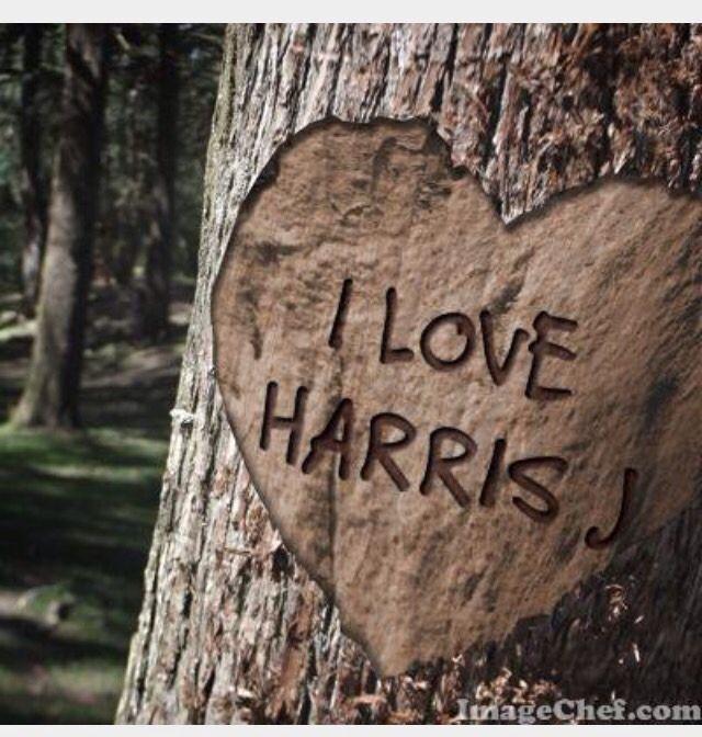I Love Harris J ❤️