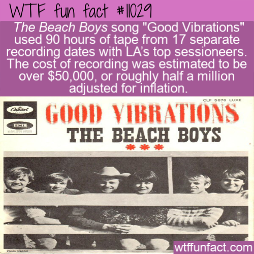 WTF Fun Fact - Good Vibes Cost A Fortune