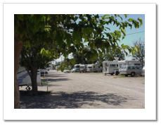 Carlsbad Rv Park Rv Parks National Parks Rv Parks And Campgrounds