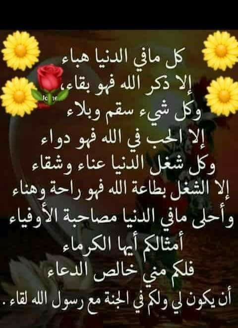 Pin By Chamsdine Chams On Citations Arabes Islamic Quotes Islam Quran Arabic Calligraphy Painting