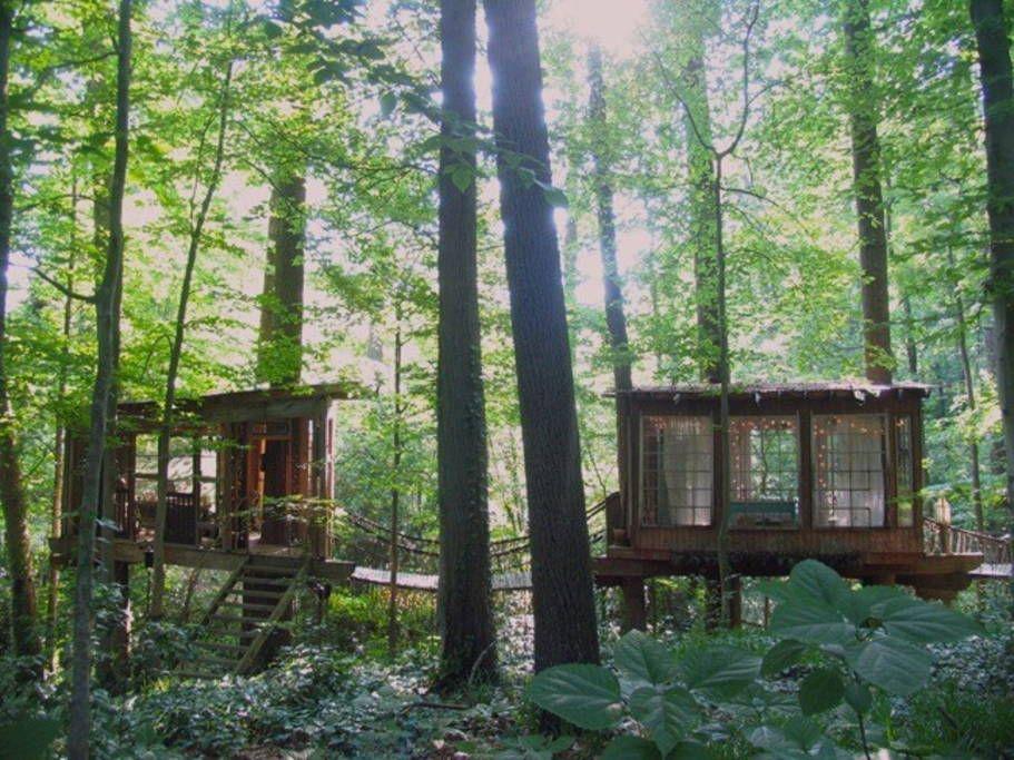 Ganhe uma noite no Secluded Intown Treehouse - Casas na Árvore para Alugar em Atlanta no Airbnb!