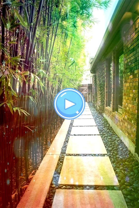 backyard stepping stones walkway and bamboo plants as a fence backyard stepping stones walkway and bamboo plants as a fence WALL MURAL INFO Take a walk across the rickety...