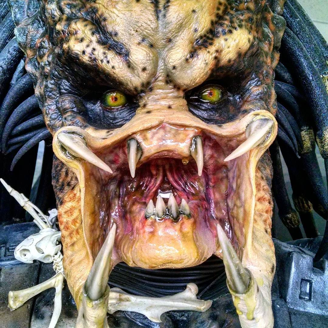 Now everybody remember to floss... Life size predator spotted at local comic shop.  #predator #predators #comics #FLYGUY #twitter #googleplus