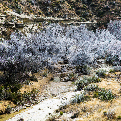 Guadalupe Mountains National Park in Salt Flat, TX ...