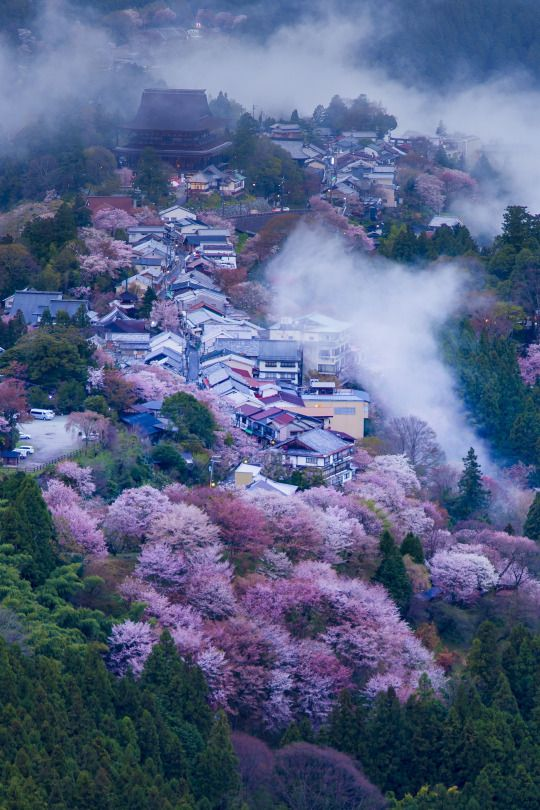 Japan Woooow What A Nice Place To Live  Lugares Exticos -4402