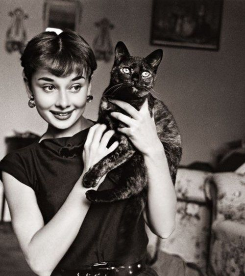50 Remarkable Cats And Their Very Very Famous Friends Audrey Hepburn Photos Celebrities With Cats Hepburn