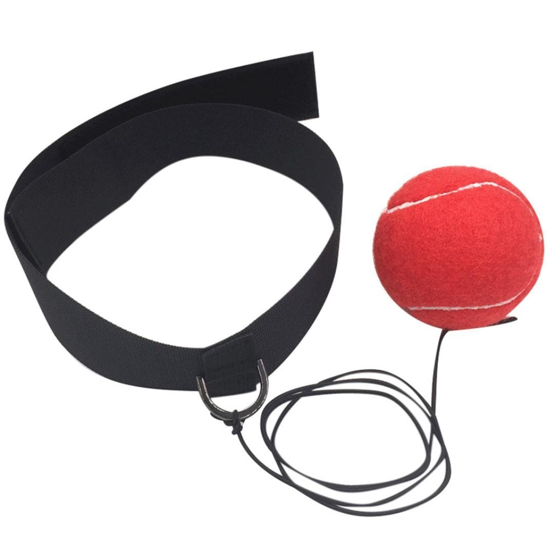 Boxing Fight Tennis Ball Wide Elastic Head Band for Reflex Speed Training