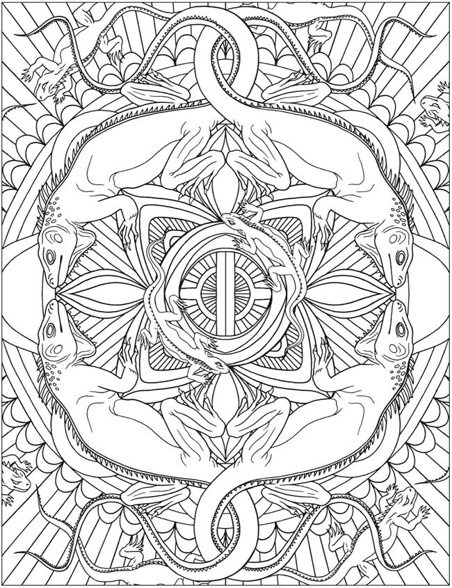 Dover Publications Animal Kaleidoscope Designs Coloring Book ...