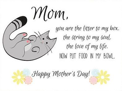 Happy Mother S Day From Your Kitty Cat Poems Mothers Day Poems Kitten Care