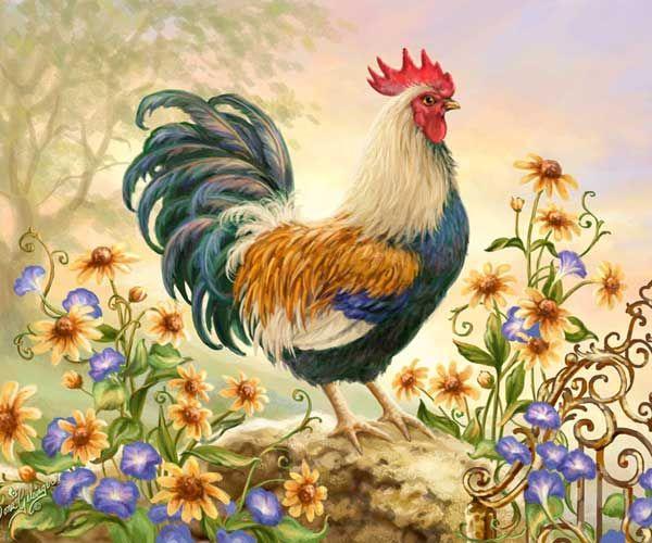 CountryCharmer Dona Gelsinger  disegni galli  Pinterest