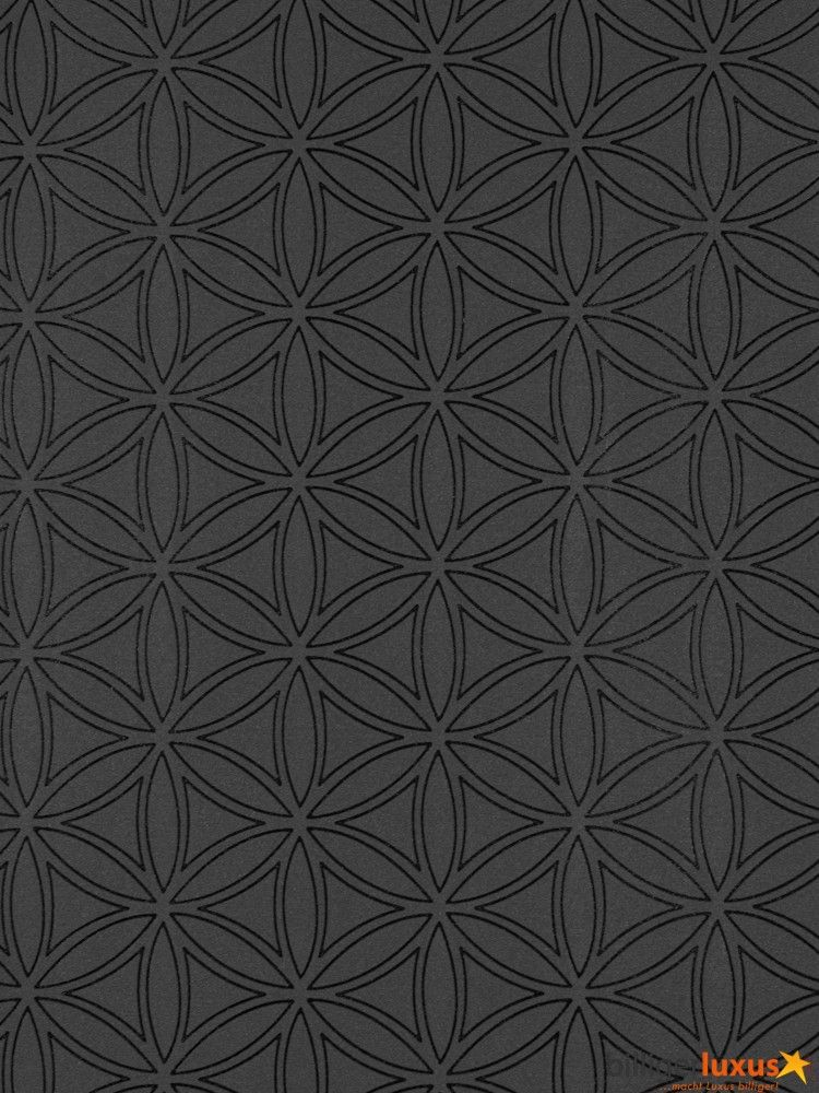 Casa Nova Tapete Graham U0026 Brown Vliestapete 20 440 20440 Grafik Modern  Schwarz