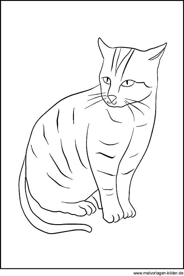 Katzen Zeichnung | cats | Pinterest | Zeichnungen, Katzen und Ausdrucken
