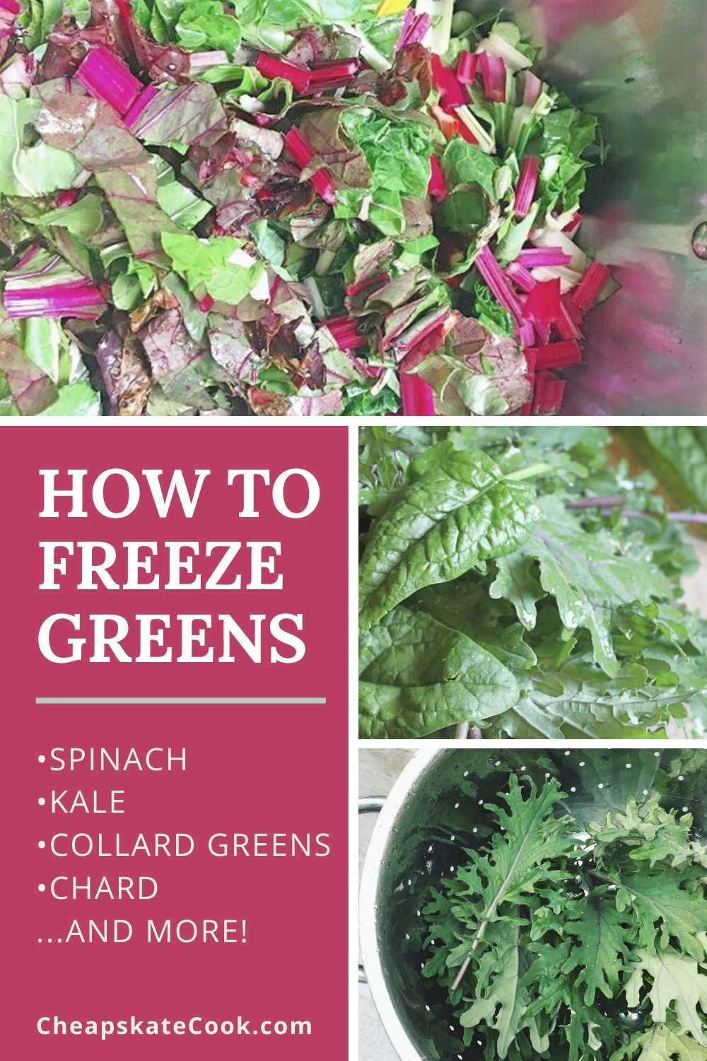 How to freeze kale other greens the easy way