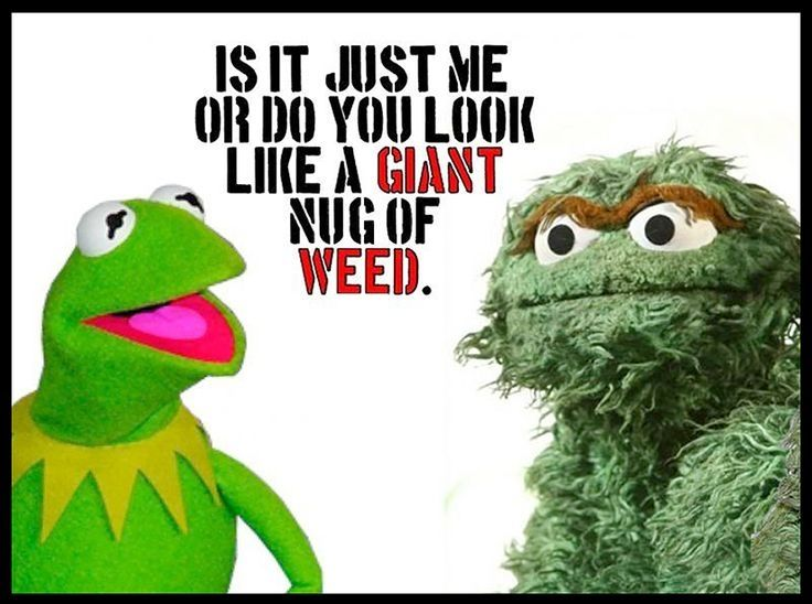Kermit And Oscar Funny Quotes Quote Weed Lol Funny Quote