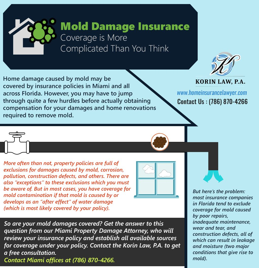 When You Want To Cover Mold Damages Get The Answer To This