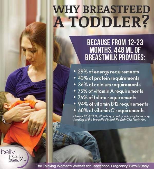 7 Arguments Against Breastfeeding Past Two Debunked