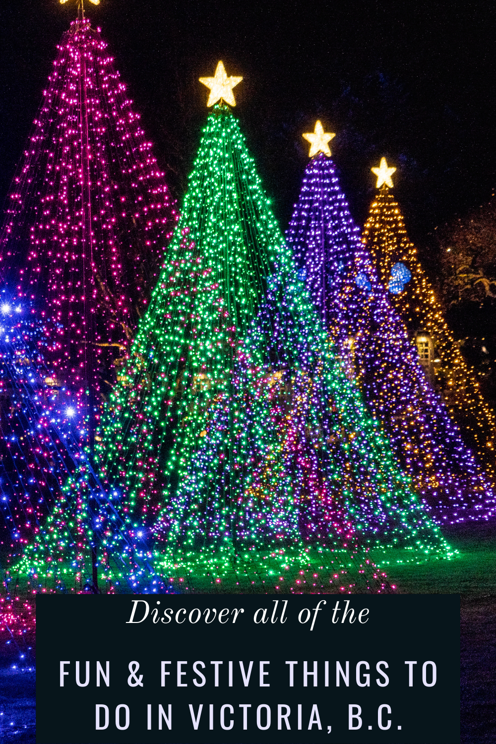 Victoria British Columbia S Capital City Sparkles During The Holiday Season Save This Local Gui In 2020 Luxury Family Travel Family Friendly Holidays Festive Travel