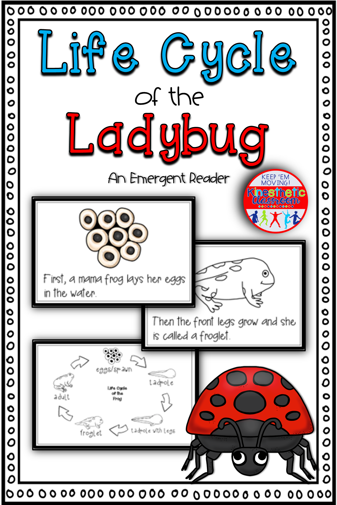 Life Cycle Of The Ladybug Science Reader