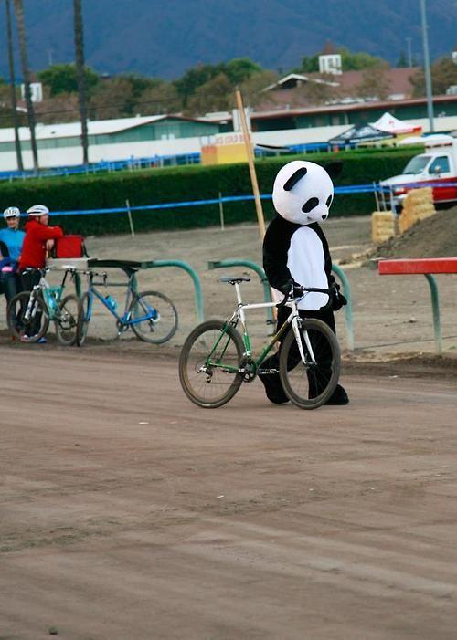 If A Panda Can Cycle So Can You Bike Pic Bicycle Bike