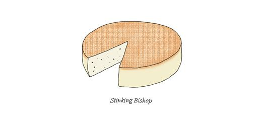 Stinky Bishop for @mmefromage illustrated by Johanna Kindvall - #johannak #foodillustration #cheese