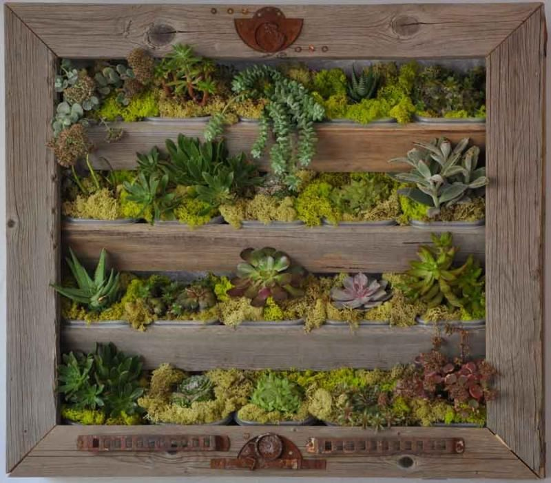 I Love Using Fresh Herbs When Cooking   Hope To Grow Them In A Wall Planter  Like This In My Dream Garden Someday!