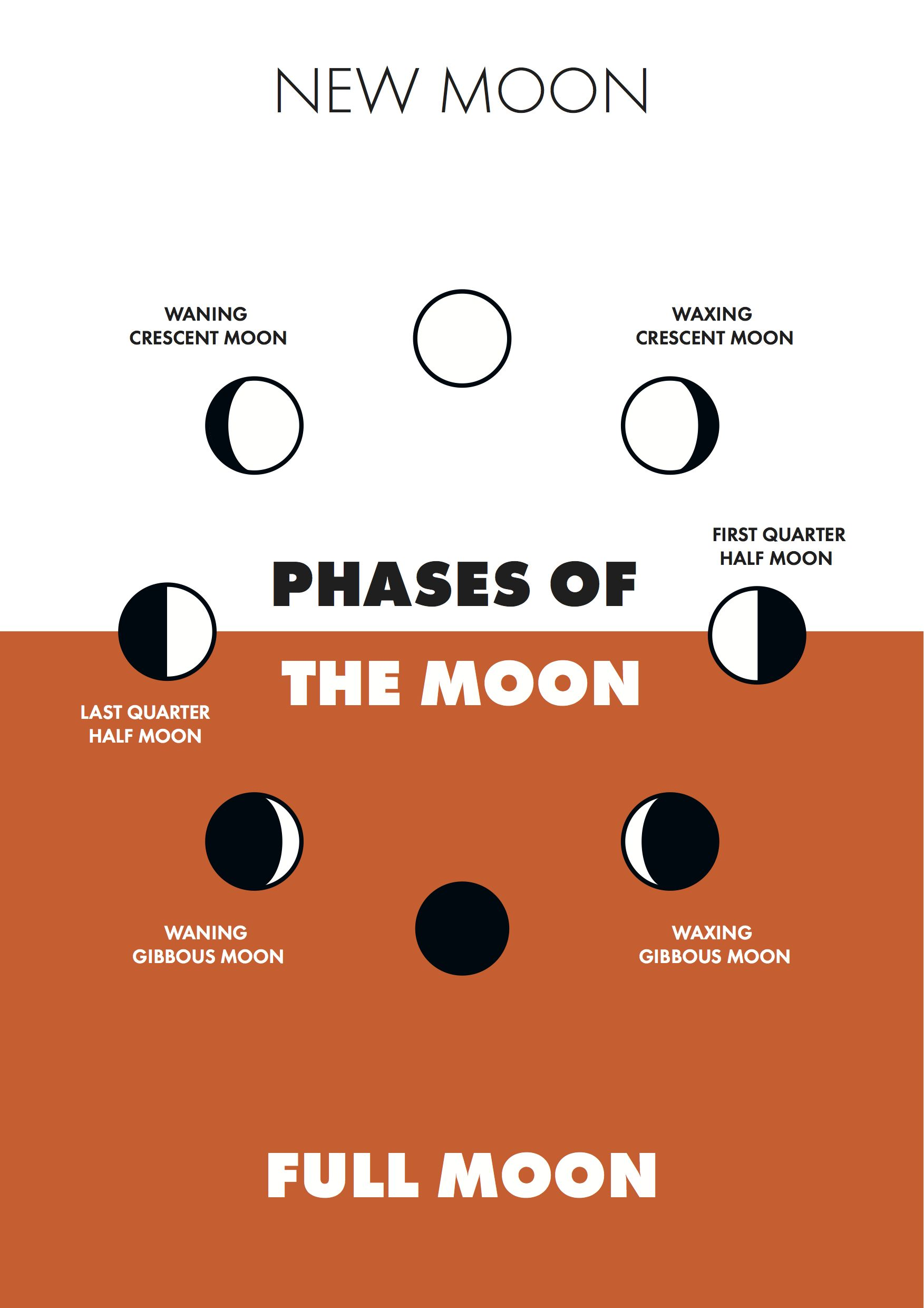 Phases Of The Moon By Andrei Bocan