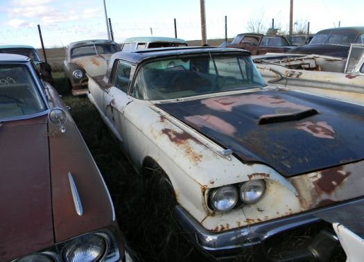 RARE '60 Thunderbird with sunroof option!! I hope somebody SAVED this one. *note '59 Ford conv't in background too.